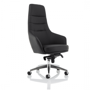 Agora Office Chair In Black With Fixed Arms And High Back