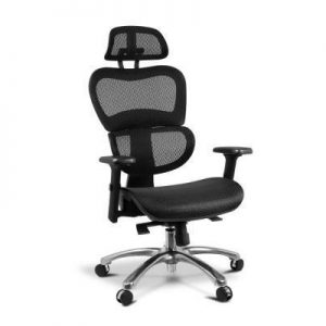 Executive Deluxe Office Mesh Chair Net Hi | Afterpay | zipPay | PayItLater