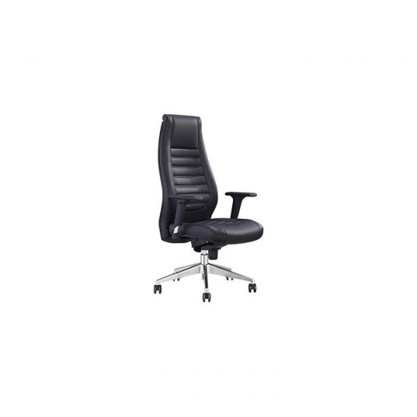 Salvador Faux Leather Executive Office Chair
