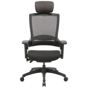 Natick Commercial Grade Fabric Ergonomic Executive Office Chair, Mesh Back