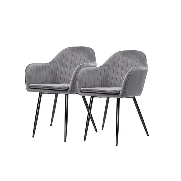 2 Pcs Dining Chairs Steel Velvet Removable Cushion Covers