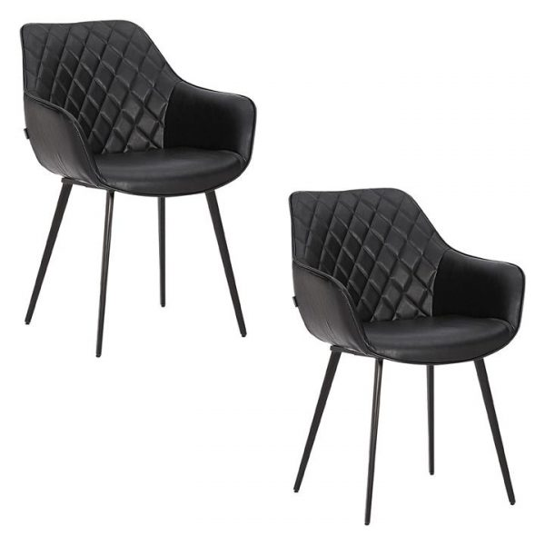 Aaric Set of 2 Faux Leather Dining Chairs