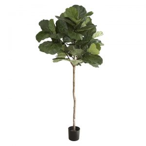 Artificial Fiddle-Leaf Tree, 1 Trunk